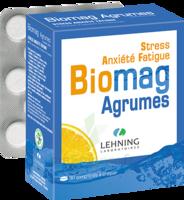 Lehning Biomag Comprimés à Croquer Agrumes B/90 à Chalon-sur-Saône