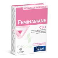 Pileje Feminabiane Cbu 30 Comprimés Bicouches à Chalon-sur-Saône