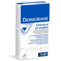 Pileje Dermobiane Cheveux & Ongles 40 Gélules à Chalon-sur-Saône