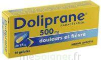 Doliprane 500 Mg Gélules B/16 à Chalon-sur-Saône