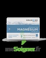 Granions De Magnesium 3,82 Mg/2 Ml S Buv 30amp/2ml à Chalon-sur-Saône