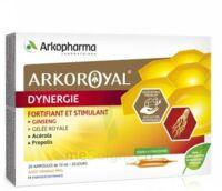 Arkoroyal Dynergie Ginseng Gelée Royale Propolis Solution Buvable 20 Ampoules/10ml à Chalon-sur-Saône