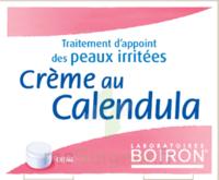 Boiron Crème Au Calendula Crème à Chalon-sur-Saône