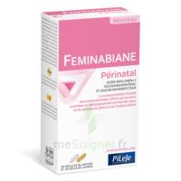 Pileje Feminabiane Périnatal 28 Gélules Blanches Et 28 Gélules Jaunes à Chalon-sur-Saône