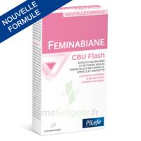 Pileje Feminabiane Cbu Flash - Nouvelle Formule 20 Comprimés à Chalon-sur-Saône