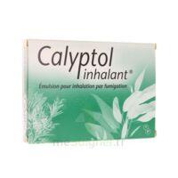 Calyptol Inhalant, émulsion Pour Inhalation Par Fumigation à Chalon-sur-Saône