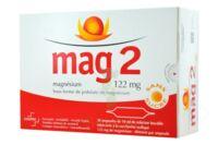 Mag 2 122 Mg S Buv En Ampoule Sans Sucre édulcoré à La Saccharine Sodique 30amp/10ml à Chalon-sur-Saône