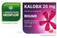 Kaloba 20 Mg Comprimé Pelliculé Plq/21 à Chalon-sur-Saône