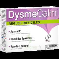 Dysmecalm Comprimés B/15 à Chalon-sur-Saône