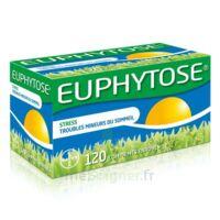 Euphytose Comprimés Enrobés B/120 à Chalon-sur-Saône