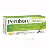 Perubore Caps Inhalation Par Vapeur Inhalation Plq/15 à Chalon-sur-Saône
