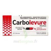 Carbolevure Gélules Adulte Plq/30 à Chalon-sur-Saône