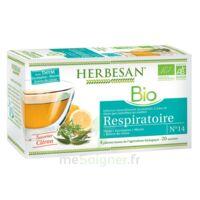 Herbesan Thym Bio Tisane Respiratoire 20 Sachets à Chalon-sur-Saône