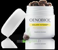 Oenobiol Solaire Intensif Caps Peau Sensible Pot/30 à Chalon-sur-Saône