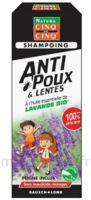 Cinq Sur Cinq Natura Shampooing Anti-poux Lentes Lavande 100ml à Chalon-sur-Saône