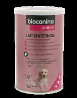 Biocanina Lait Poudre Maternisé B/400g à Chalon-sur-Saône