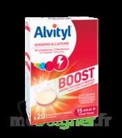 Alvityl Boost Comprimés B/20 à Chalon-sur-Saône