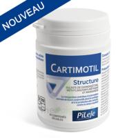 Pileje Cartimotil Structure 60 Comprimés Sécables à Chalon-sur-Saône