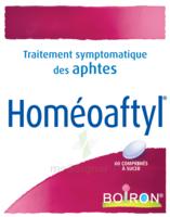 Boiron Homéoaftyl Comprimés à Chalon-sur-Saône
