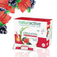 Naturactive Phytothérapie Fluides Solution Buvable Circulation 2b/20 Sticks/10ml à Chalon-sur-Saône