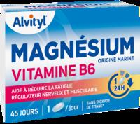 Govital Magnésium Vitamine B6 Comprimés B/45 à Chalon-sur-Saône
