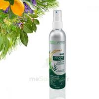 Naturactive Assaini'spray 200ml à Chalon-sur-Saône