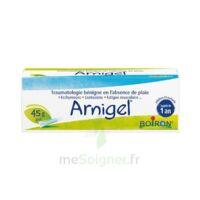 Boiron Arnigel Gel T(alumino-plastique)/45g à Chalon-sur-Saône