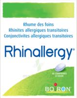 Boiron Rhinallergy Comprimés B/40 à Chalon-sur-Saône