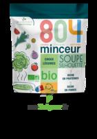804® Minceur Soupe Silhouette Bio Sachet/180g à Chalon-sur-Saône