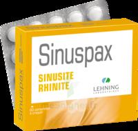 Lehning Sinuspax Comprimés à Croquer 3plq/20 à Chalon-sur-Saône