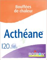 Boiron Acthéane Comprimés B/120 à Chalon-sur-Saône